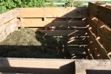 grass cuttings in the compost