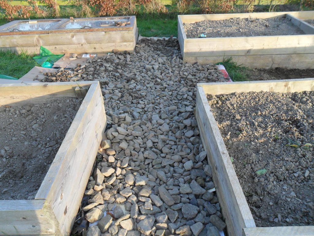 A stone pathway between raised vegetable beds.