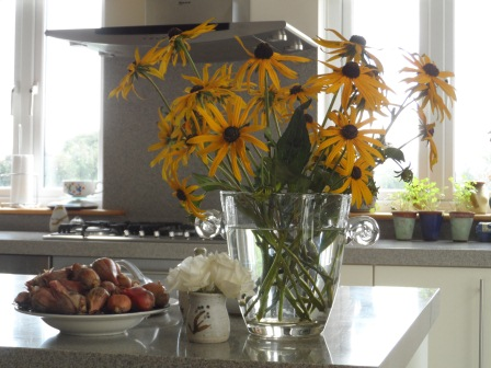 Some Black-eyed Susan flowers (Rudbeckia hirta) from the garden (and another bowl of shallots!).