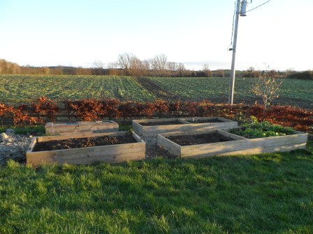 A cleaned up vegetable garden.