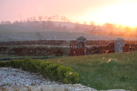 A snowing sunset.