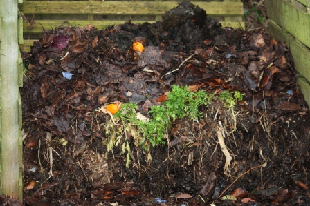 Oldest picture of compost from end of February/beginning of March.