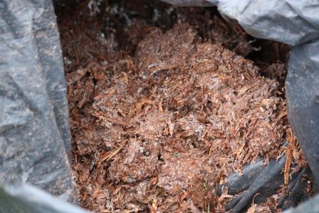 A bag of mushroom compost.