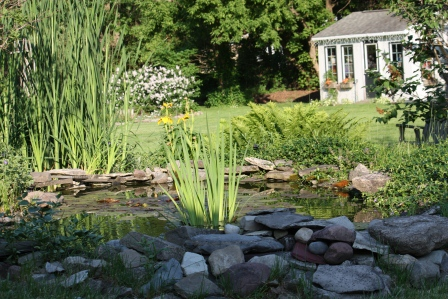 Judi and Lennie have created something so peaceful and beautiful in their back yard!