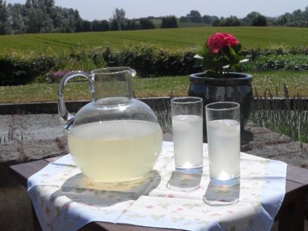 A cool drink of lemonade.
