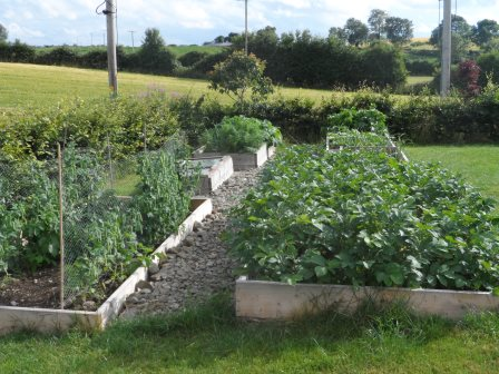 The veggie beds.