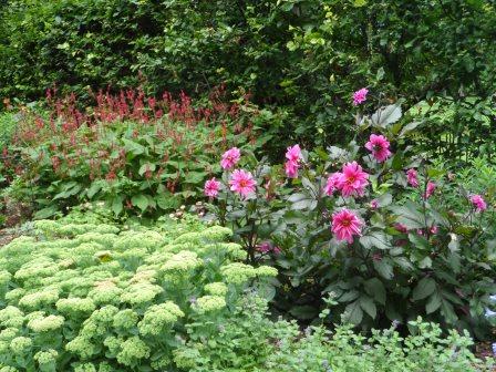 More photos of the herbaceous garden.