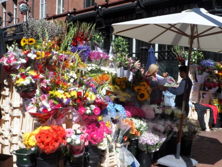 Flower stall on Grafton Street.