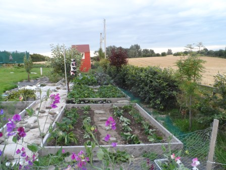 View of the garden in August.