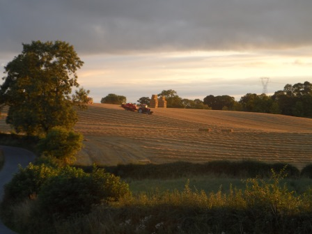 The field on the other side of our house being harvested.