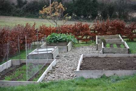 The front bed on left (with the chicken wire) and middle bed on the right have rye growing already.