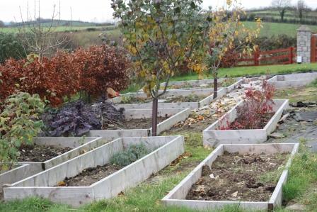 November look at the garden