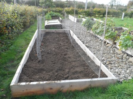 One of the beds after digging up the soil and planting rye.
