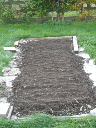 A new bed planted with rye.