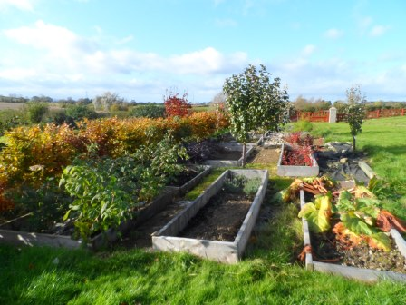 November look at the garden.