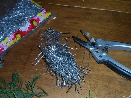 Floral pins and garden sheers