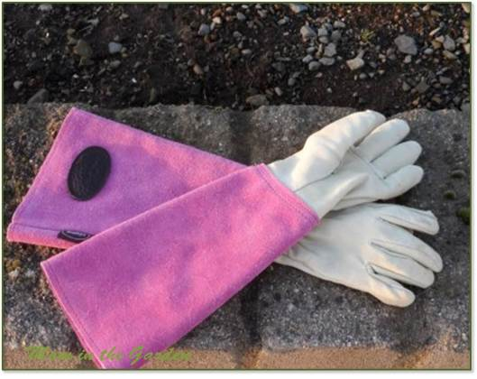 Leather Bradley pruning gloves
