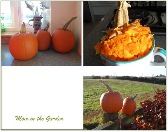 The large pumpkin  in front was used for this post.  And then there were two...