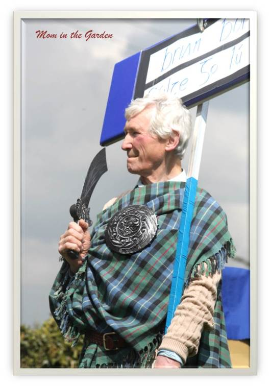 Brian Boru supporter (from Howth). His sign says in Irish:  Brian Boru Welcome to Louth