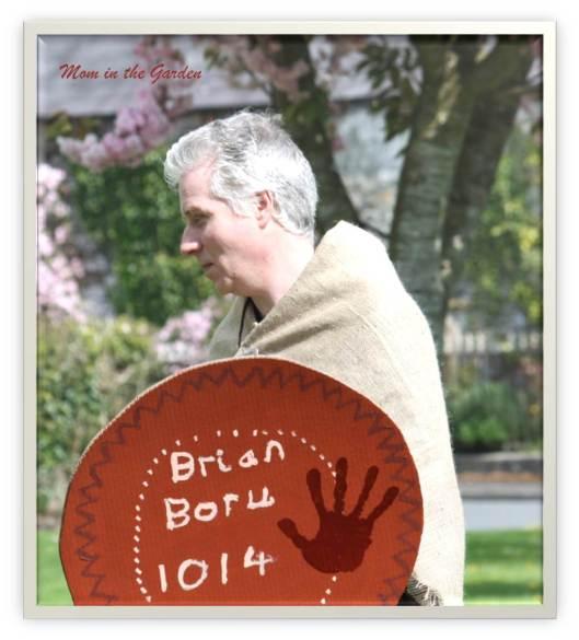 Brian Boru supporter