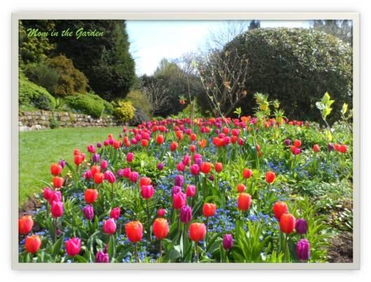 Dorothy Clive Gardens, England