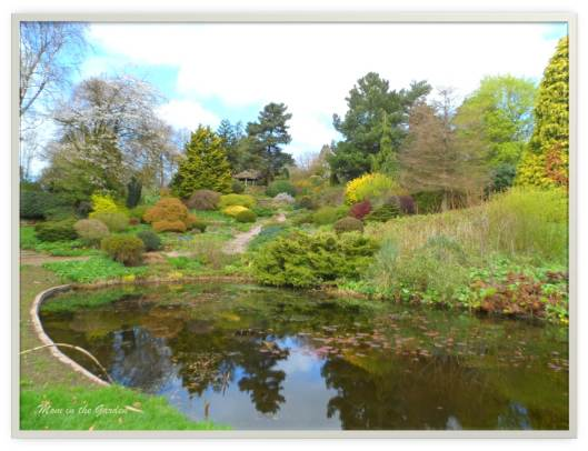 Pond at entrance to the gardens