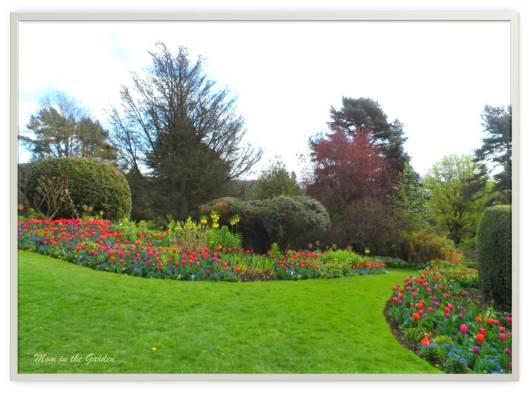 Tulip walkway