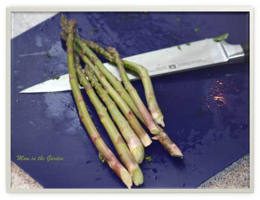 Some asparagus to add into dishes