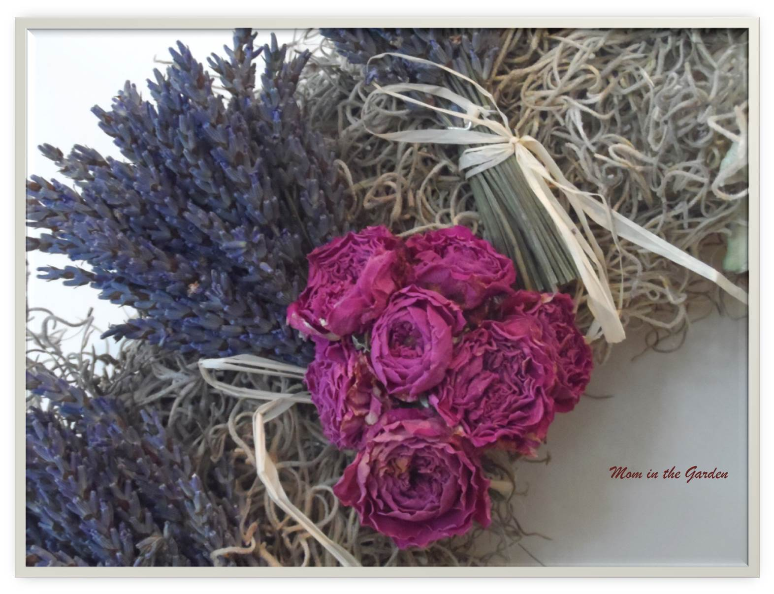 Roses and Lavender from the garden