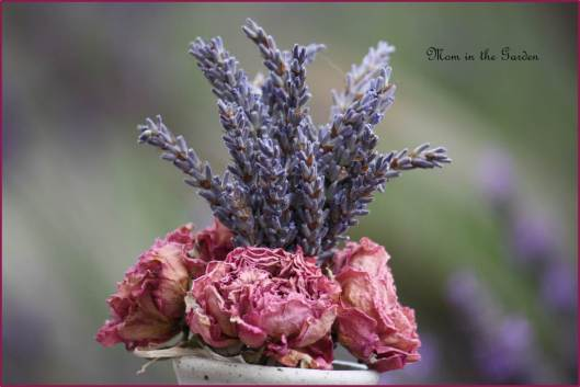 dried lavender & dried roses