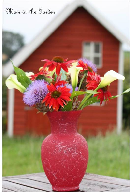 In a Vase on Monday: The color Red