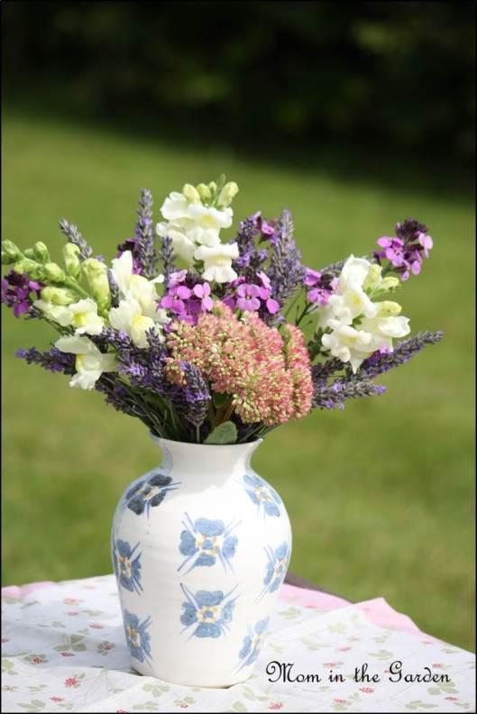 Snapdragon, Lavender, Erysimum bowles, Autumn Joy
