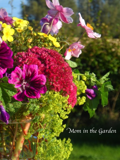 In a Vase on Monday: A Playful gathering of flowers