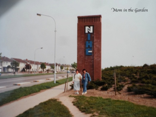 Walk down memory lane... The National Institute for Higher Education - months before receiving university status.
