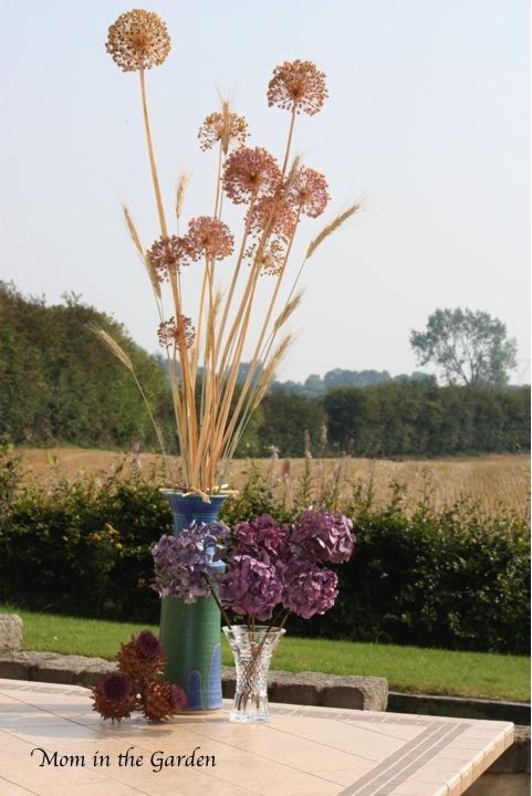 A rather dry arrangement with the barley fields in the background.