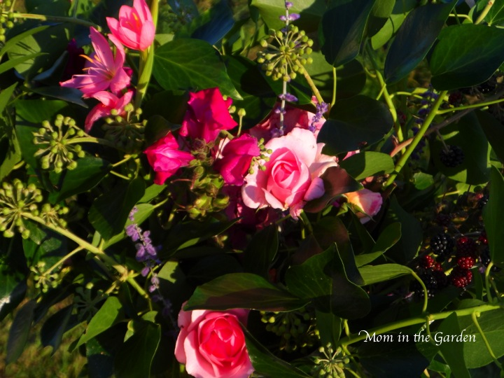 Ivy, roses, snapdragon, schizostylis (or rather: Hesperantha), Perovskia atriplicifolia (Russian Sage)