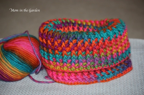 cowl neck growing