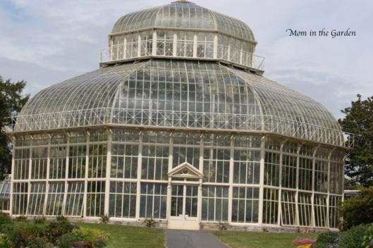 National Botanic Gardens, Glasnevin, Dublin