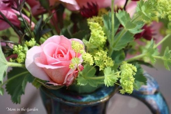 Rose pink in vase