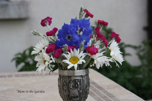 Delphinium, shasta daisy, Dusty Miller Lychnis Coronaria