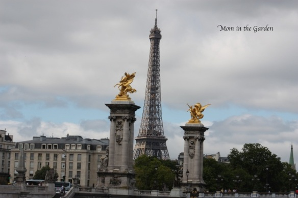 A full view of the Eiffel tower during our boat tour on the Seine