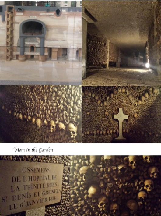 A look at the catacombs. The top left picture gives an indication of  how far down below the city the tunnels are.