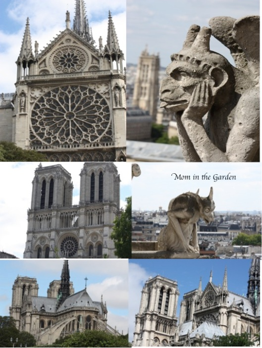 Different views of/from Notre Dame