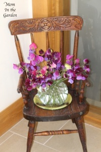 Sweet pea in a vase sitting on my antique potty chair