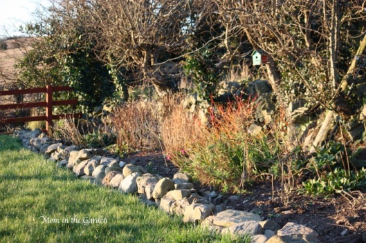 Ditch Wall Garden on a gorgeous sunny early spring day