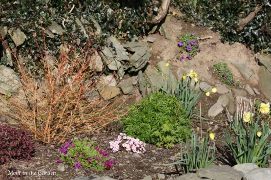 The ditch wall garden full of color