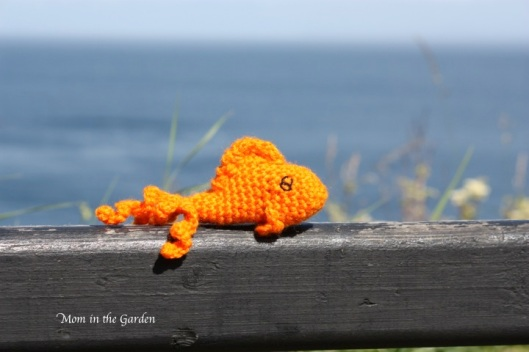 easy pattern crochet fish