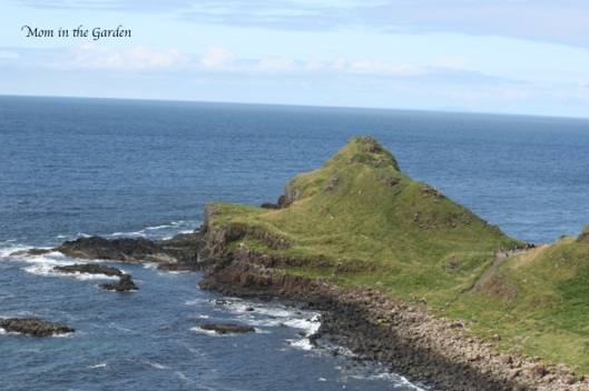 View from Giant's Causeway
