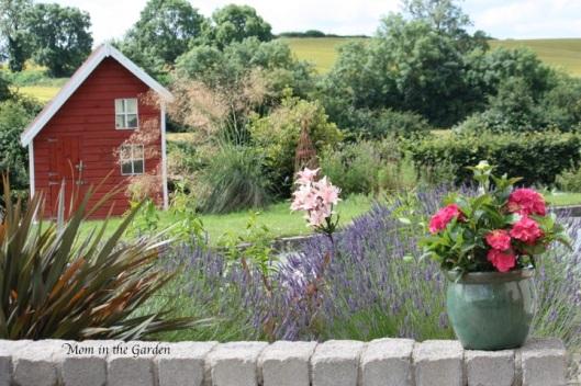 lavender & lilies