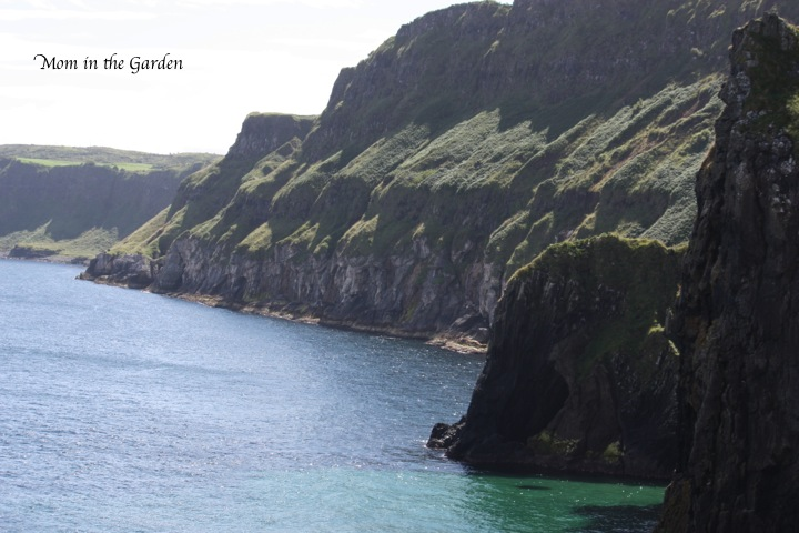 another view after crossing the rope bridge